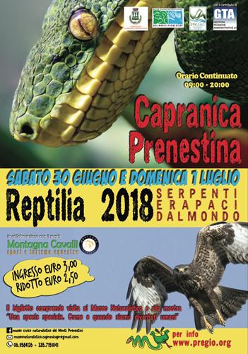 Reptilia, la mostra a Palazzo Barberini di Capranica Prenestina