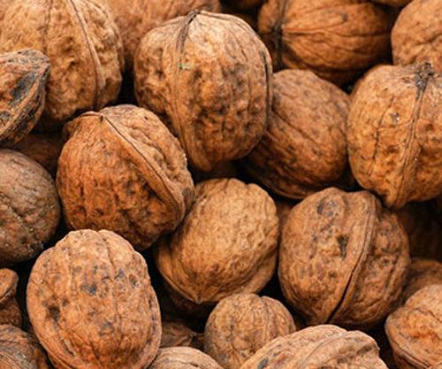 Le noci, un frutto che combatte l'invecchiamento e aiuta a dimagrire