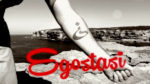 """Shandon su youtube il video celebrativo di """"Egostasi"""""""