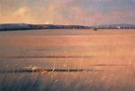 Spazi di quiete, paesaggi e land art, la mostra  del maestro Ettore de Conciliis a Matera
