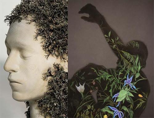 Natural Traces by Andreas Senoner e Zachari Logan alla Isolo17 Gallery di Verona fino al 28 febbraio 2019
