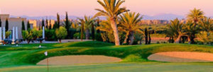 Arte&Golf – Fairmont Royal Palm Challenge: parte il circuito. Martin Edwards del Manchester United special guest