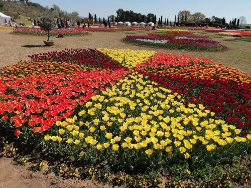 Nuove coreografie di fiori e colori per il Roma Flowers Park