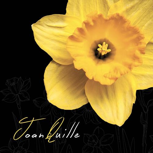 """Joan Quille in concerto al Der Mast di Brescia per presentare il suo nuovo album """"Joan Quille"""""""