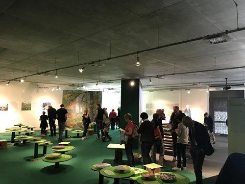 """A Pinzolo la nuova mostra del Parco Adamello Brenta """"Montagne Verdi"""""""