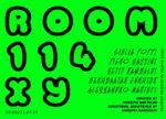 Room 114 XY, la mostra collettiva a cura di Massimo Bartolini alla CAR DRDE di Bologna