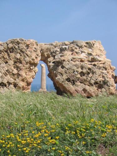 Museo e Parco Archeologico Nazionale di Capo Colonna, consegna lavori