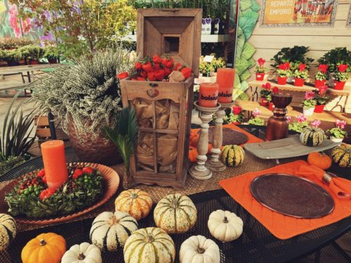 Garden Festival d'Autunno di Steflor dal 21 settembre al 20 ottobre a Paderno Dugnano