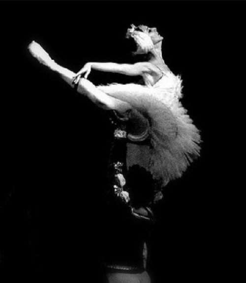 """Muore Alicia Alonso, EXIT media le dedica l'uscita del film """"Yuli – Danza e libertà"""""""