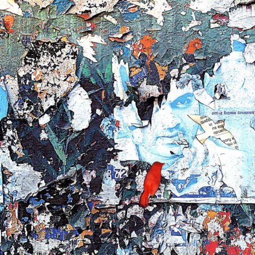 Comunque volare, la mostra di Serena Lugli presso la Galleria Il Laboratorio di Roma
