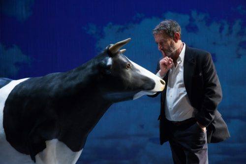 Michele Serra in L'Amaca di domani. Considerazioni in pubblico alla presenza di una mucca al teatro Brancaccio di Roma