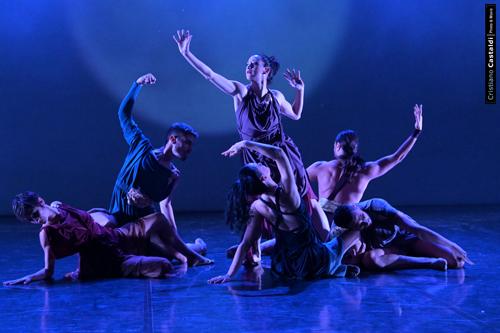 Calvinfesta: in scena 'Alma Tadema', la danza d'autore di Ricky Bonavita