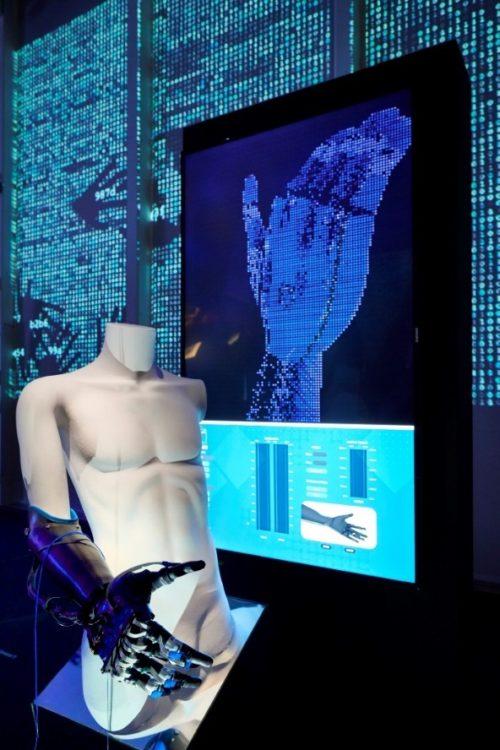 Arto bionico nella mostra U.mano – Arte e scienza: antica misura, nuova civiltà a Bologna al Centro Arti e Scienze Golinelli