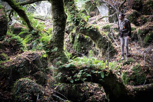 Natale nel Bosco di Biancaneve tra Elfi, Fate e Re con Il bosco incantato ad Acquapendente