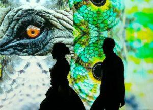 """""""Wannabe"""" e """"Outdoor dance floor"""" allo Spazio Rossellini per BiennaleMArteLive 2019"""