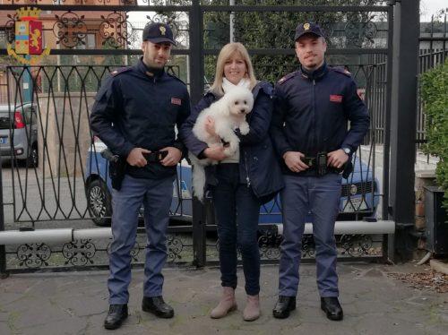 Charlie è tornato a casa grazie alla Polizia di Stato