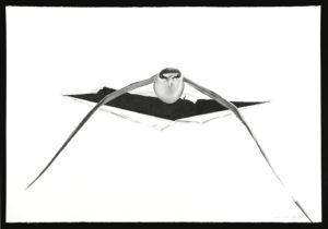 Attraverso, la mostra personale di Massimiliano Galliani alla Salamon Fine Art a Milano