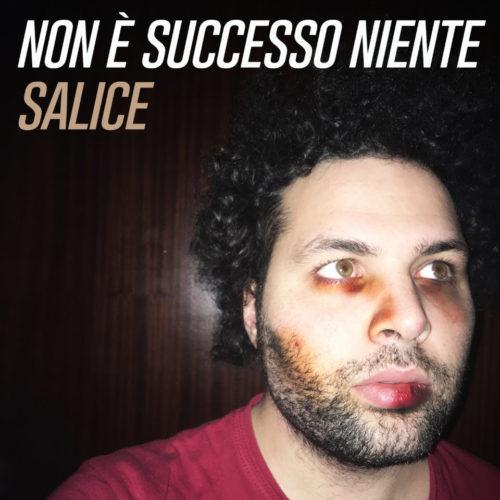"""""""Non è successo niente"""", il nuovo singolo di Salice"""