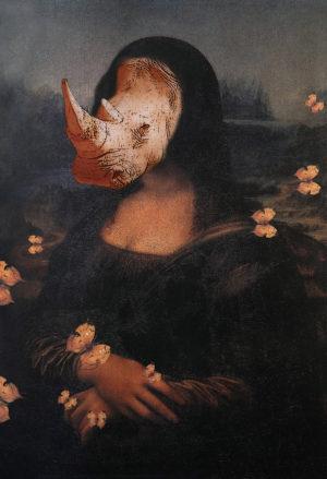 """""""Natura&Donna"""" mostra fotografica di Caterina Orzi all'Oratorio di San Quirino di Parma"""
